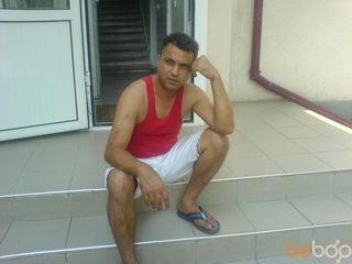 shohib