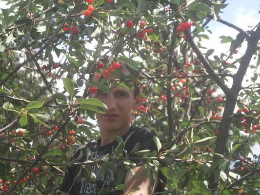 Фото мужчины александр, Рославль, Россия, 29