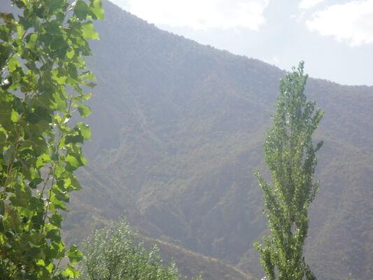 Фото мужчины шухрат, Душанбе, Таджикистан, 29