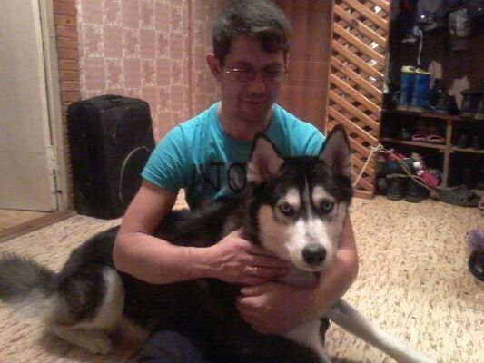 Фото мужчины Дмитрий, Владимир, Россия, 41