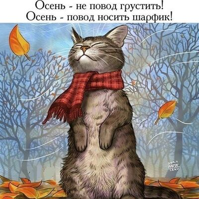Фото мужчины runo, Москва, Россия, 48